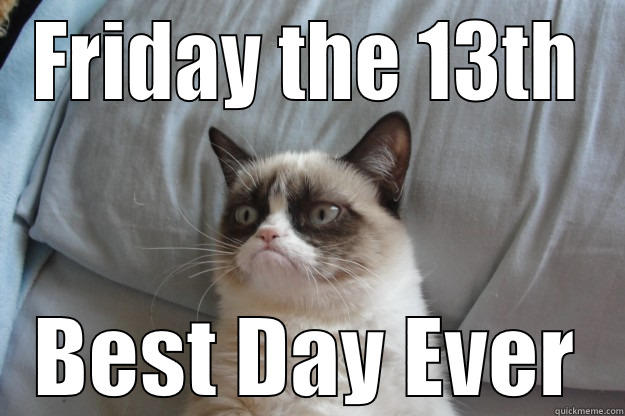 friday th 13th funny meme cat