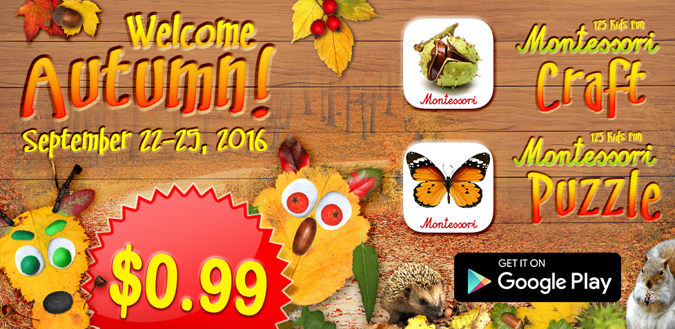 autumn montessori promotion sale