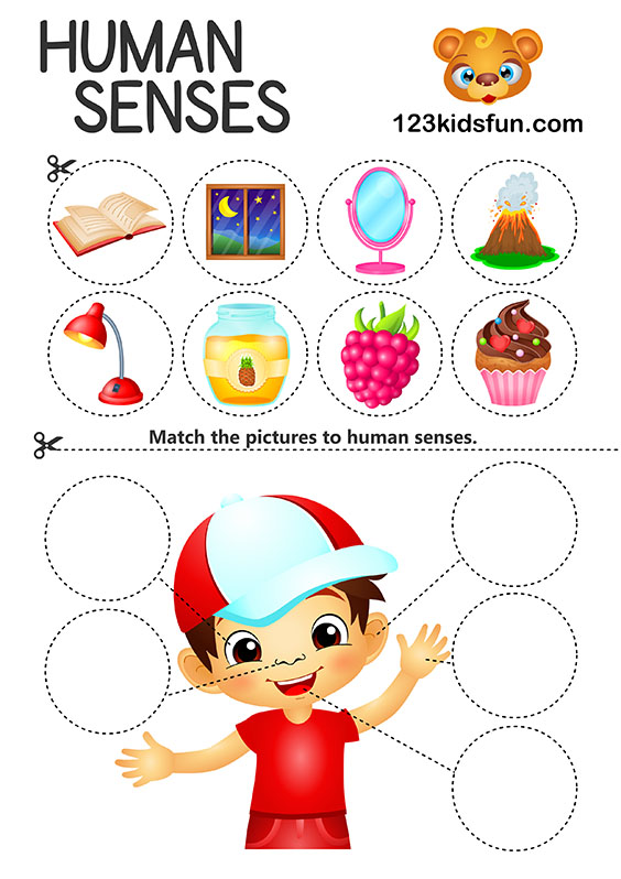 Human Body - 5 Senses Printables for Kids – Homeschooling